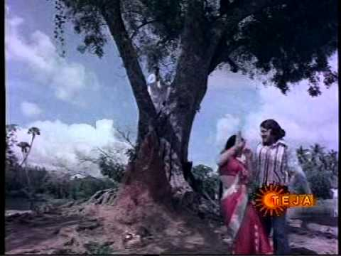 Jayamalini Song In Red Saree video