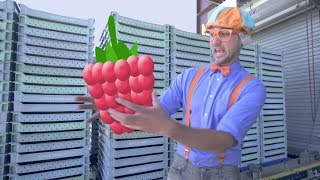 Blippi Raspberry Factory Tour | Learn Machines for Kids and FRUIT!
