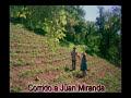 Corrido a Juan Miranda - Dueto Teloloapan