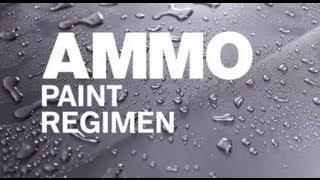 How to Use the AMMO Paint Regimen