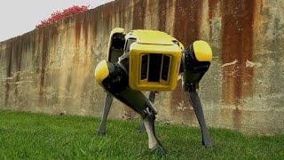 Boston Dynamics teases updated robot dog, SpotMini