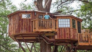 Treehouse Utopia: The Finish Line