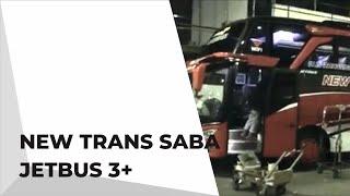 NEW TRANS SABA RILIISSSSS