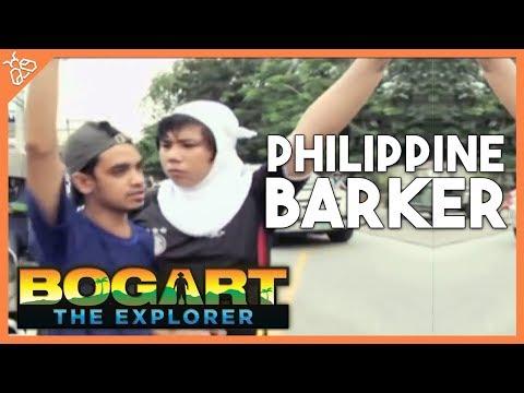 Bogart the Explorer - The Philippine Barker
