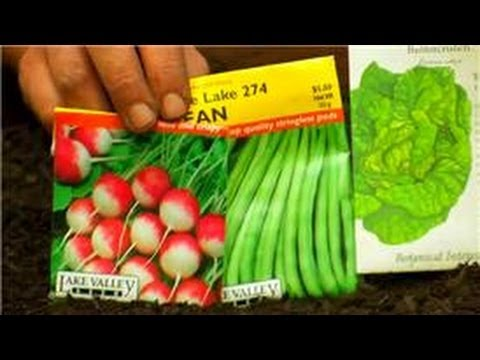 Vegetable Gardening : How Do I Plan a Raised Vegetable Garden?