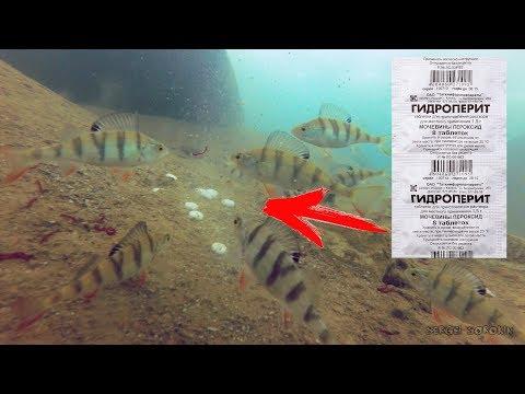 ГИДРОПЕРИТ ТВОРИТ ЧУДЕСА!!! ПЕРЕКИСЬ ВОДОРОДА В ДЕЙСТВИИ! Подводная съемка Рыбалка весной 2018