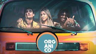 Orgânico verão #6 - SóCiro | San Joe | Lourena - Singular