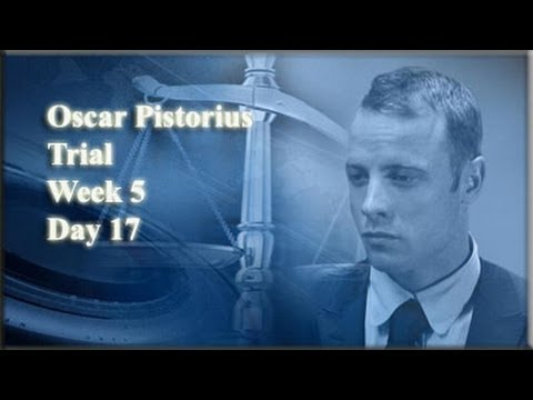 Oscar Pistorius Trial: Monday 7 April 2014, Session 3