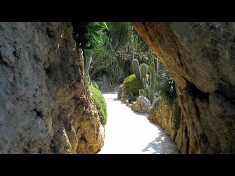Film Botanischer Garten Monaco.mov