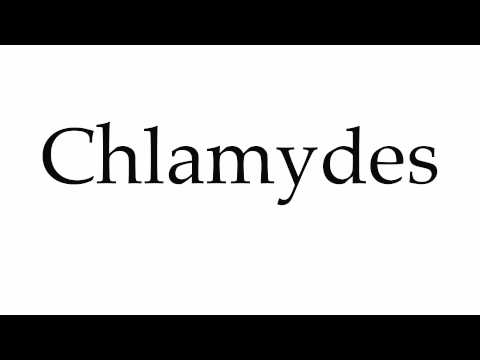 Header of chlamydes