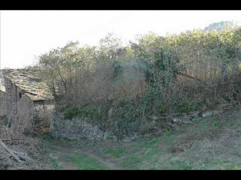 san pietro val lemina rustico ampio con terreno e progetto approvato immobiliare vendita nordedil