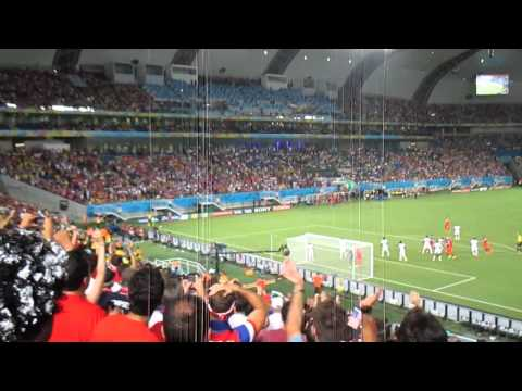 USA v. Ghana World Cup 2014 John Brooks Goal Inside Stadium