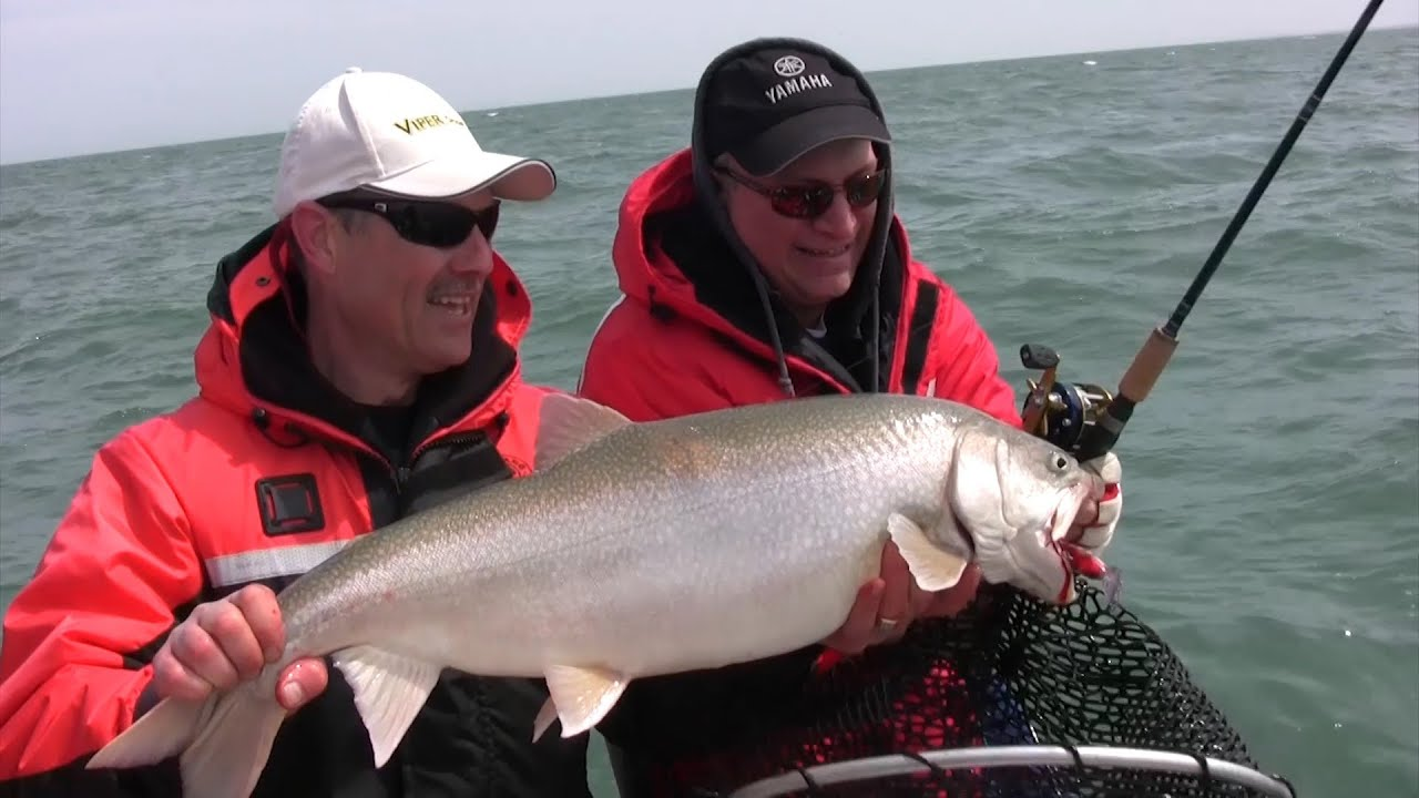 Tips on trolling for lake trout using crank baits and a for Lake trout fishing tips