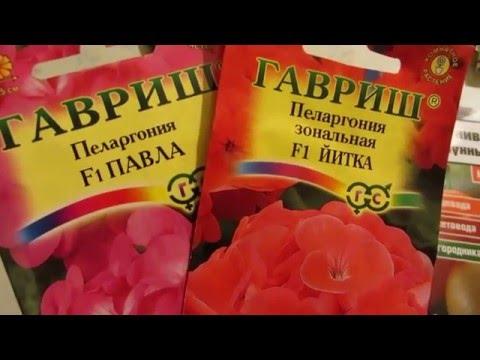 ЯНВАРЬ - СЕЕМ ГЕРАНЬ.