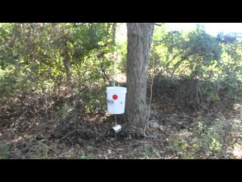 5 gallon bucket deer feeder