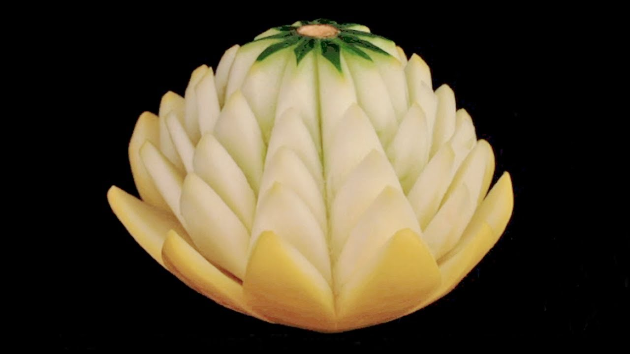 Art of water lily flower yellow squash beginners by