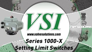 Series 1000 X Limit Switches
