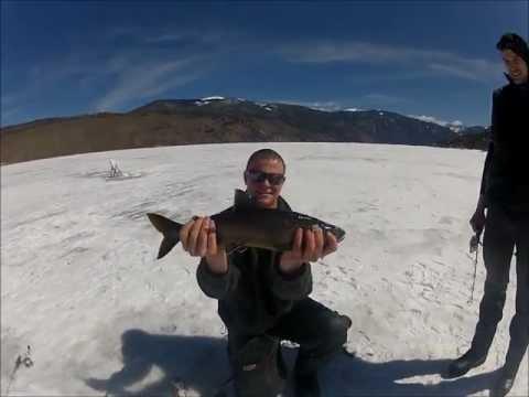 Lake granby fishing videos for Lake granby fishing report