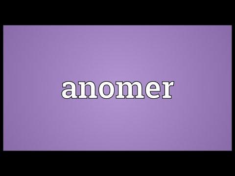 Header of anomer