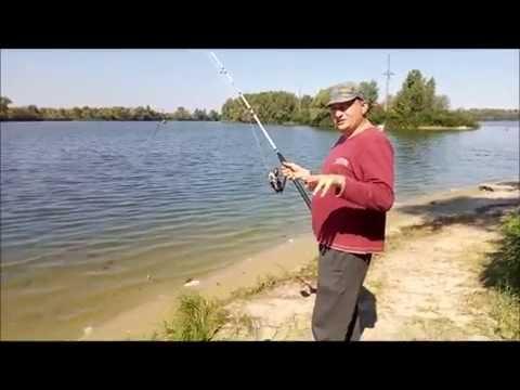 рыбалка летом на сома