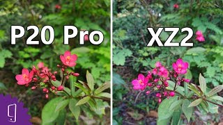Huawei P20 Pro vs Sony Xperia XZ2 Camera comparison丨Low Light Photo丨960FPS Slow Motion丨