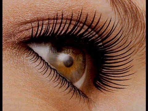 How to Curl Your Lashes Like a Pro