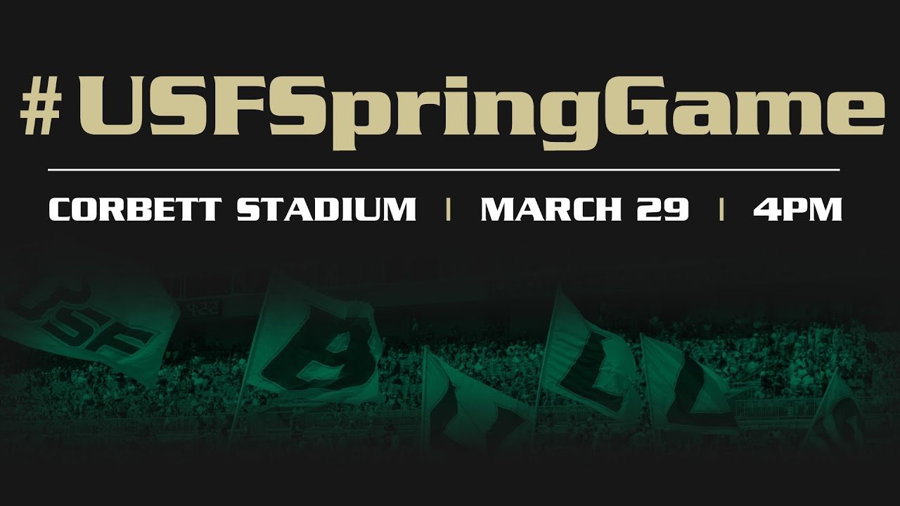 2014 Usf Football Spring Game