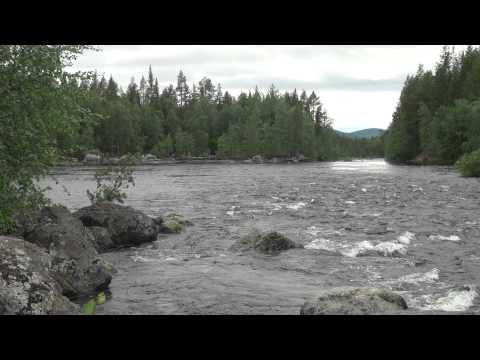 кандалакша видео природа рыбалка