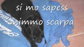 MIMMO SCARPA -si mo sapess video