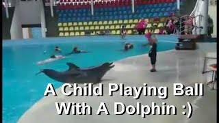 A Kid Playing Football With A Dolphin! INCREDIBLE!!