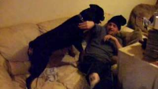 Pappys Hat 2 with sonny the rotty