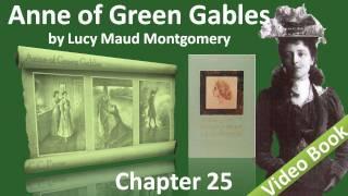 Vídeo 20 de Mandy Barnett