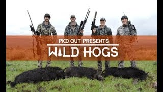 Wild Pigs Attack | Eastern Oregon