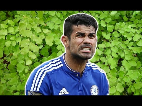 Chelsea FC Diego Costa Nature Documentary