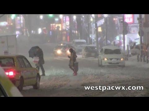 Tokyo Snow Storm Footage 2014 東京吹雪のビデオ