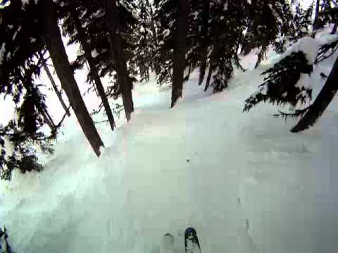 Blackcomb Trees+Pow