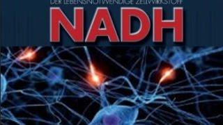 NADH für die Zellregeneration