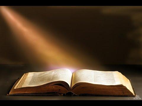 Какие книги почитать