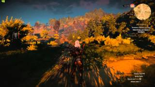 Тест The Witcher 3: Wild Hunt+FPS (Intel core i5 4570+GTX 770+8gb RAM)