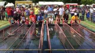 Great American Duck Race