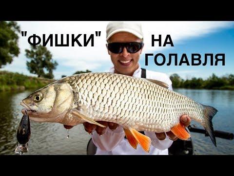 Полезные советы в голавлиной рыбалке и новые рабочие воблеры.