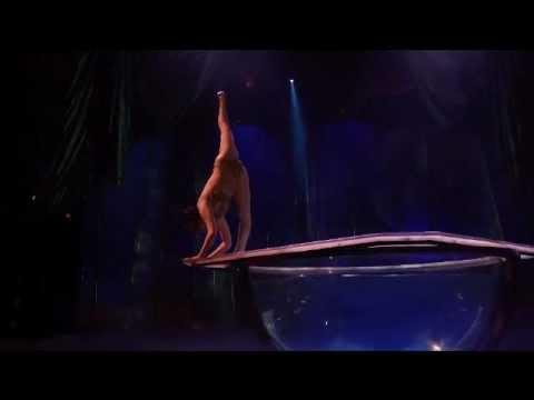 Cirque Du Soleil - Water Bowl