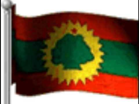 Sagalee Bilisumma Oromia