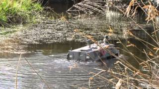 Amphibious vehicle 1:6 remote control