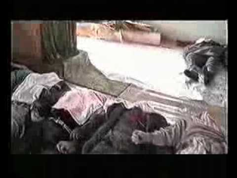 Serbian War Crimes in Kosovo - The Racak Massacre