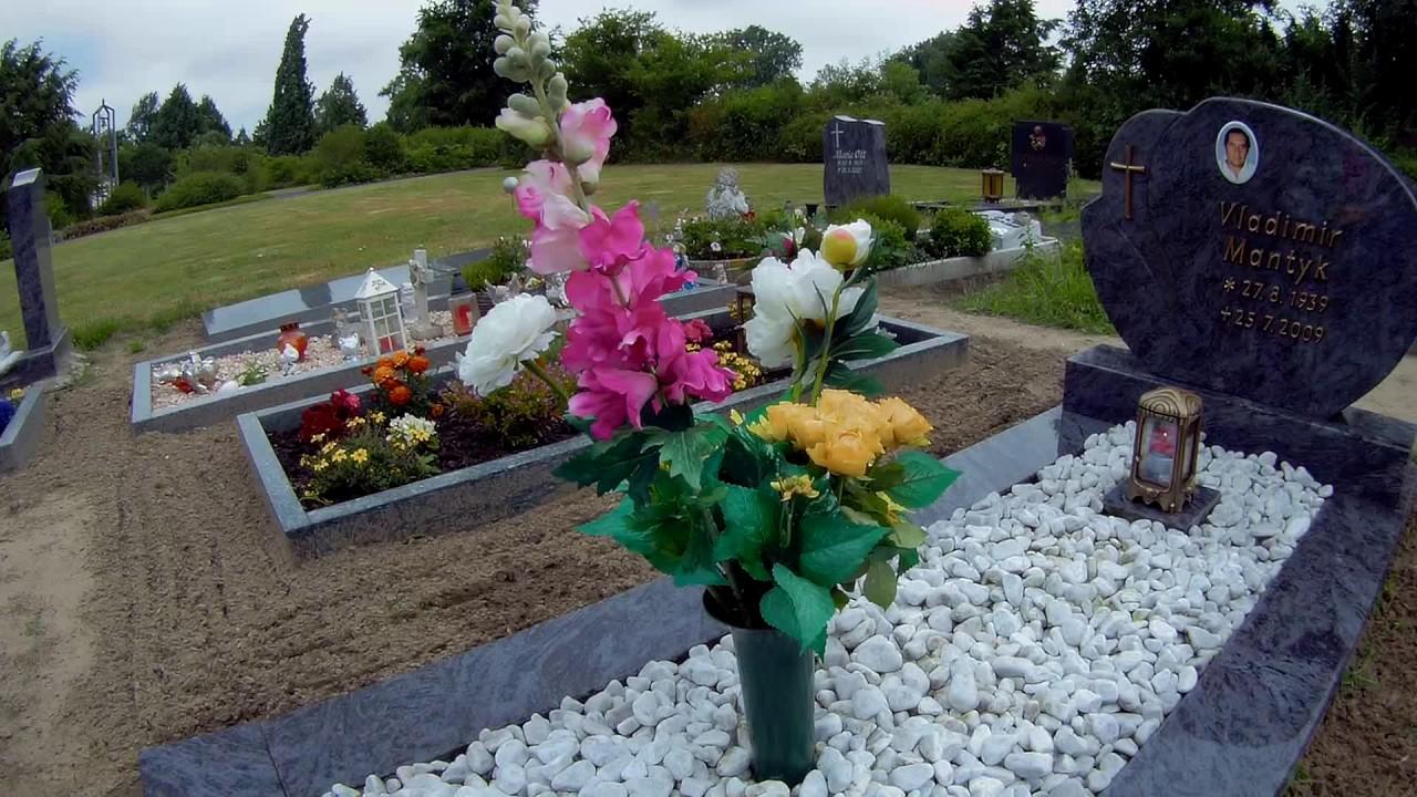 Можно ли на кладбище сажать цветы из своего сада 10