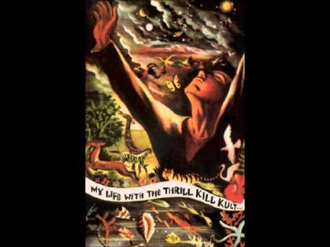 My Life With The Thrill Kill Kult - These Remains