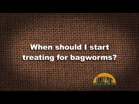 Q&A - When should I start treating for bagworms?