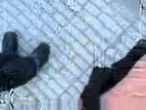 Dava  Dokhtar  Irani video