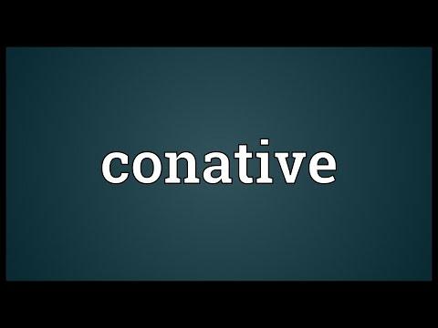 Header of conative